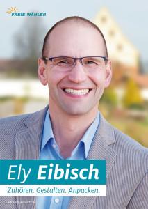 Plakat Ely Eibisch Landrat 2020